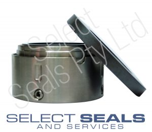 Sykes Pump Seal