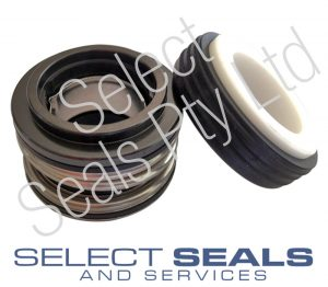 Davey Spa Pump Seal