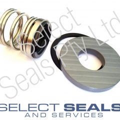 APV Puma Pump Seals