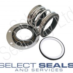 Ebara Pump Seals